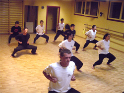 freedomstyle.canalblog.com école kung-fu